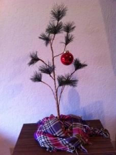 SIM TREE